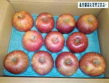サンデー  ゴールド農園 葉とらずりんご3kg  02 201708