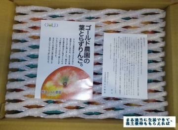 サンデー  ゴールド農園 葉とらずりんご3kg  03 201708