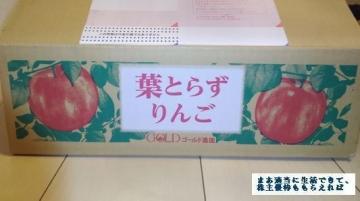 サンデー  ゴールド農園 葉とらずりんご3kg  04 201708