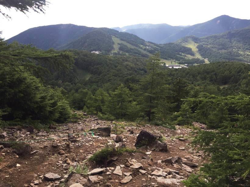 浅間外輪山538