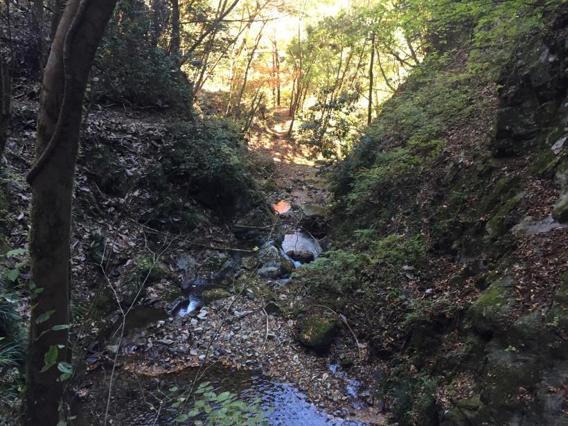 麻生山周回31
