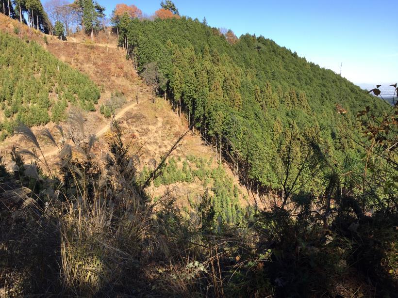 麻生山周回133
