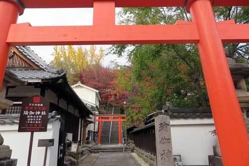 171122瑜伽神社鳥居