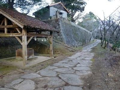 森陣屋_桜の馬場