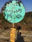 Naoshima4.jpg