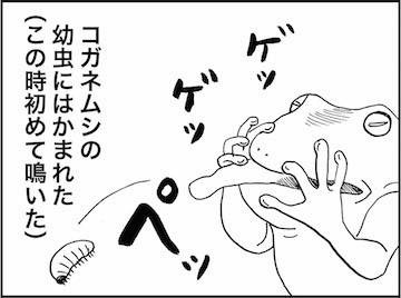 kfc01008-3