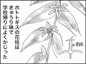 kfc01016-4