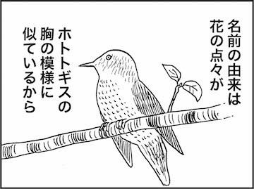 kfc01016-5