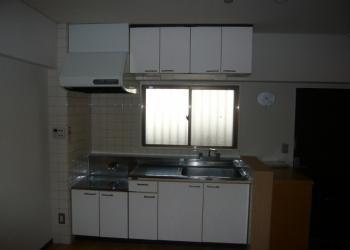 ブルースカイハイツ203 キッチン