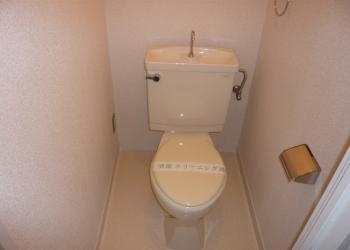 ブルースカイハイツ203 トイレ