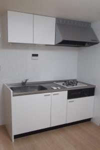 大関ビル 101 キッチン