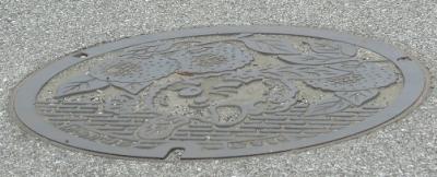 栃木県 上河内マンホール ゆず?