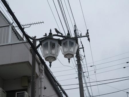 群馬県 富岡 街灯