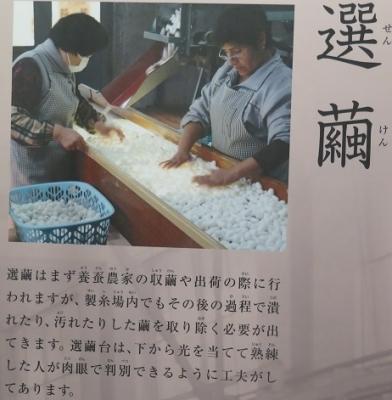 富岡製糸場 選繭(せんけん)