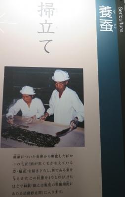 富岡製糸場 養蚕