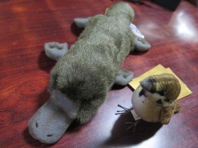 カモノハシとスズメちゃん