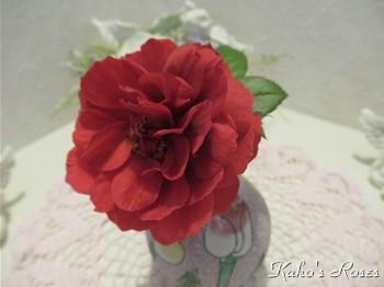 s-IMG_0967k30.jpg