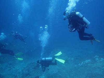 17-11-4 タイツアー3 青い海
