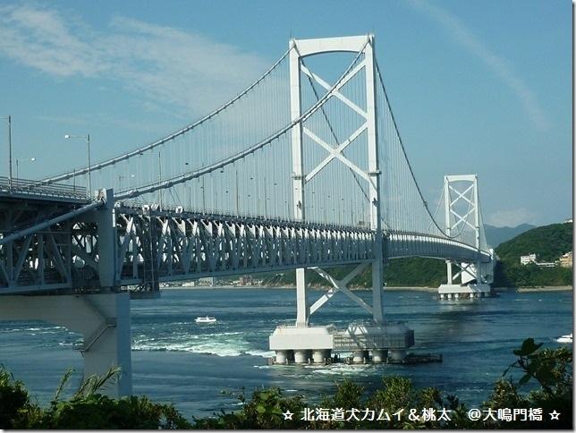 20170827淡路島02-21
