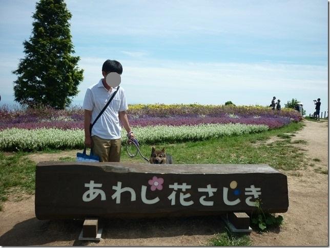 20170827淡路島04-01