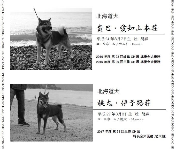 2017NKC三重広告01