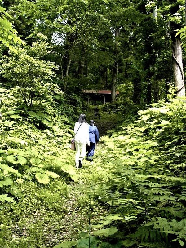 小沼神社への山道