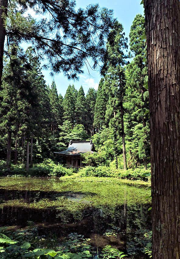 霊境空間そのものの小沼神社の景観~青空と小沼と社殿
