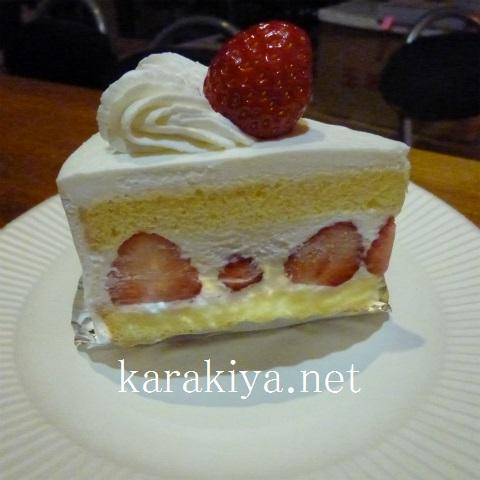 s480201712いちごショートケーキと日本酒 (1)