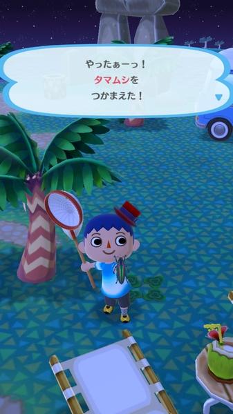ポケットキャンプ日記2 (2)