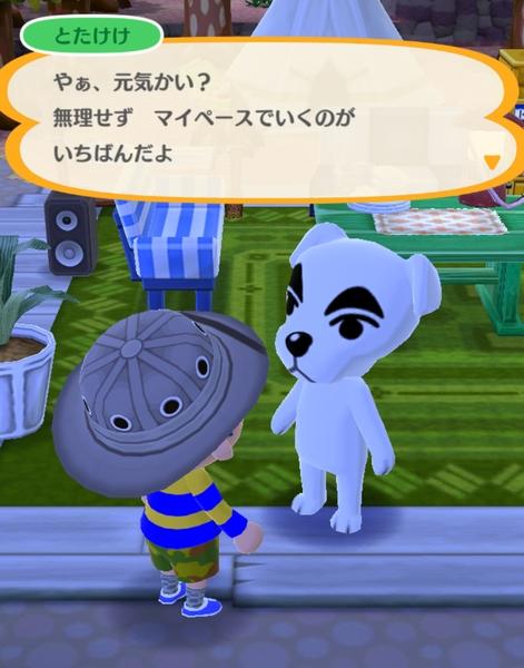 ポケットキャンプ日記3 (8)