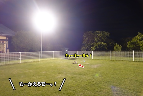 DSC01536.jpg