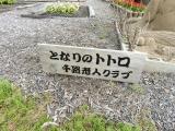 JR千路駅 「となりのトトロ」砂像 タイトル
