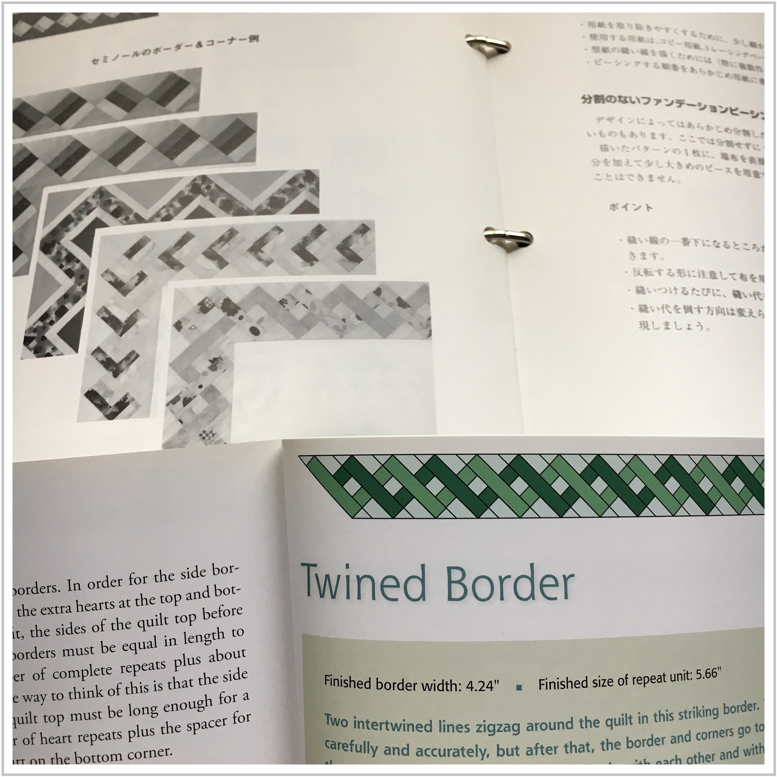 border_1_1002.jpg
