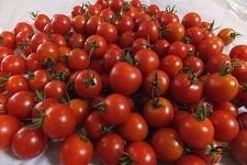 山盛りトマト