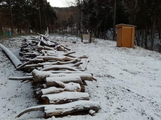 雪の翌朝1209