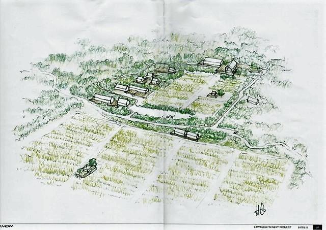 ぶどう圃場完成イメージ1217