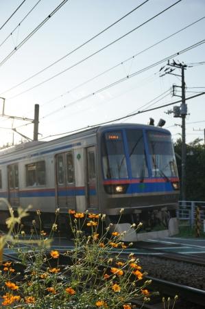 DSC02754奥沢