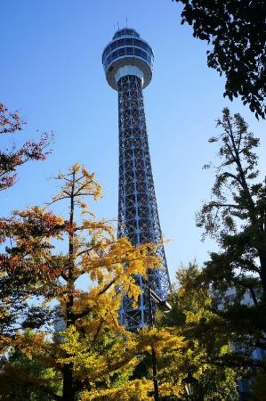 DSC03183横浜