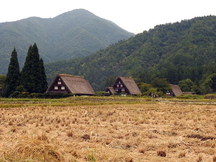 白川郷の秋を探しに出かけよう!5