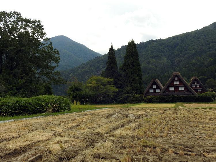 白川郷の秋を探しに出かけよう!6