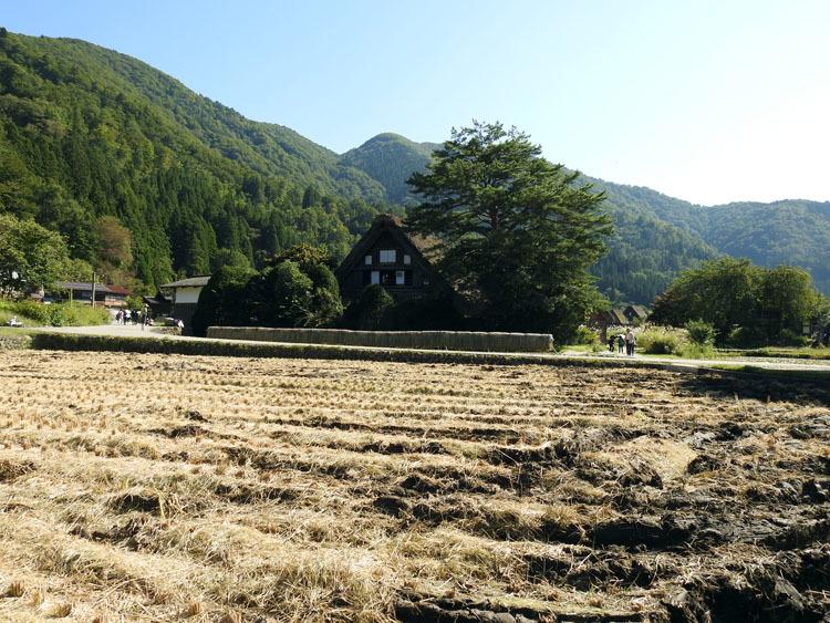 白川郷の秋を探しに出かけよう!9