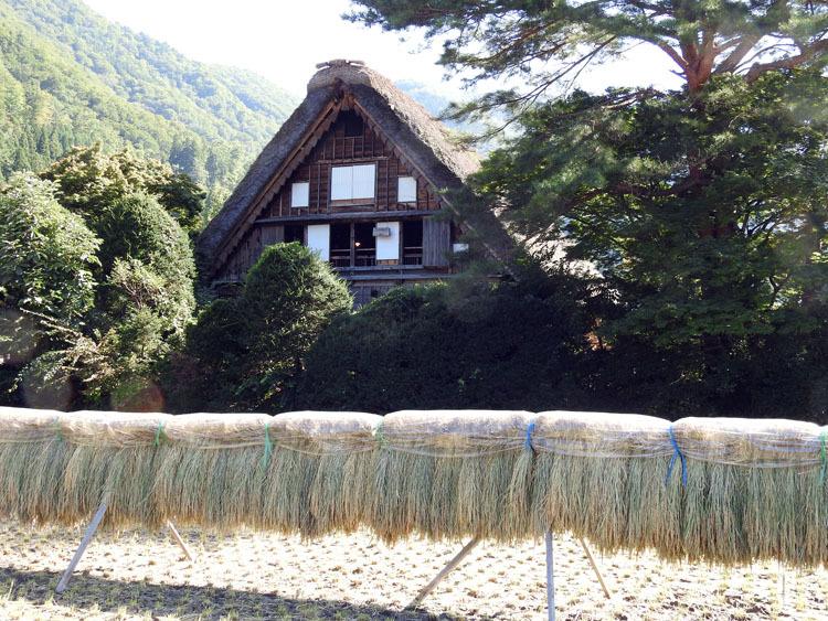 白川郷の秋を探しに出かけよう!10