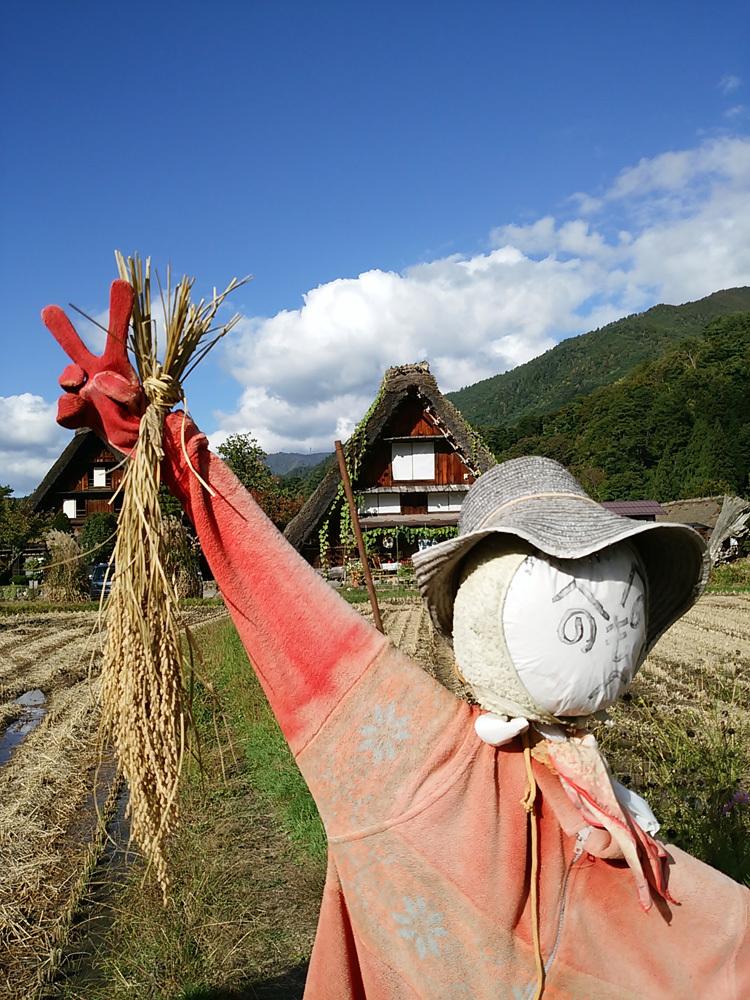 明日18日・19日 白川郷 飯島地区最終のどぶろく祭り5