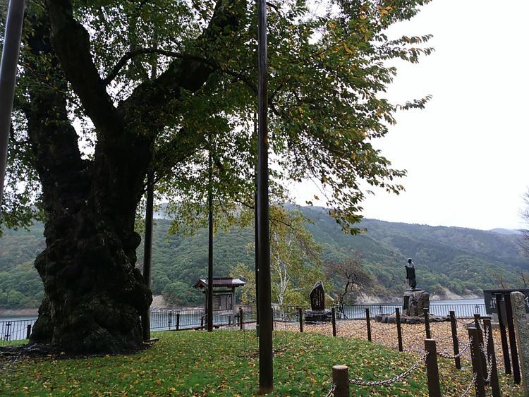 秋の荘川桜 風景9