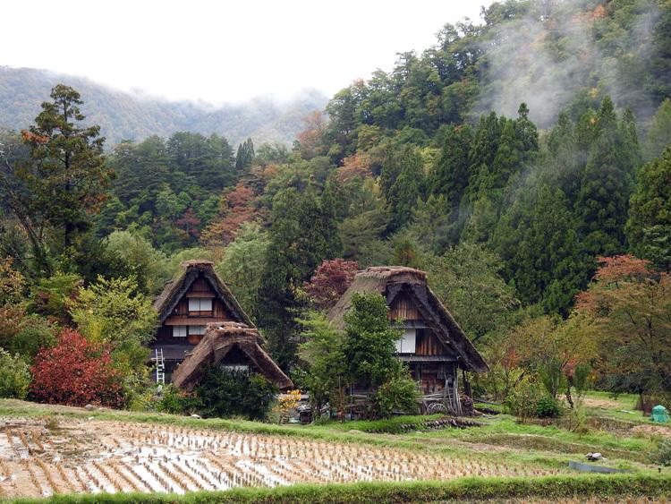 山に囲まれた飛騨 白川郷だけに、「紅葉」も見どころのひとつ1