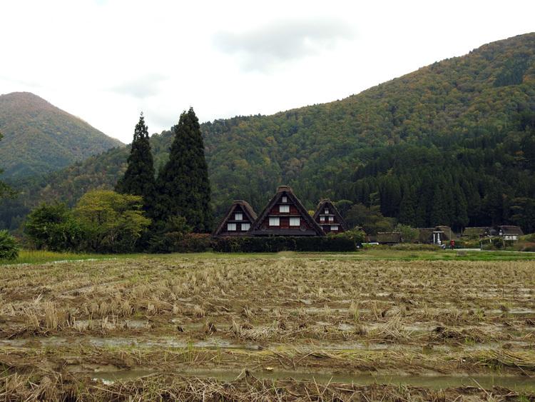 山に囲まれた飛騨 白川郷だけに、「紅葉」も見どころのひとつ4