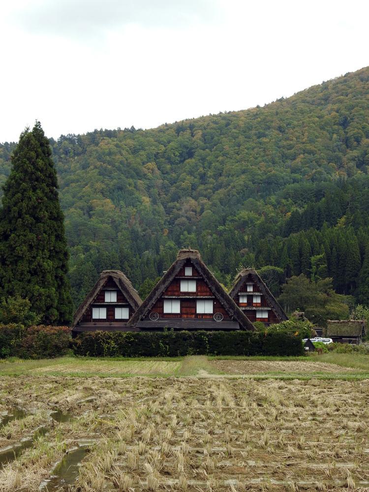 山に囲まれた飛騨 白川郷だけに、「紅葉」も見どころのひとつ5