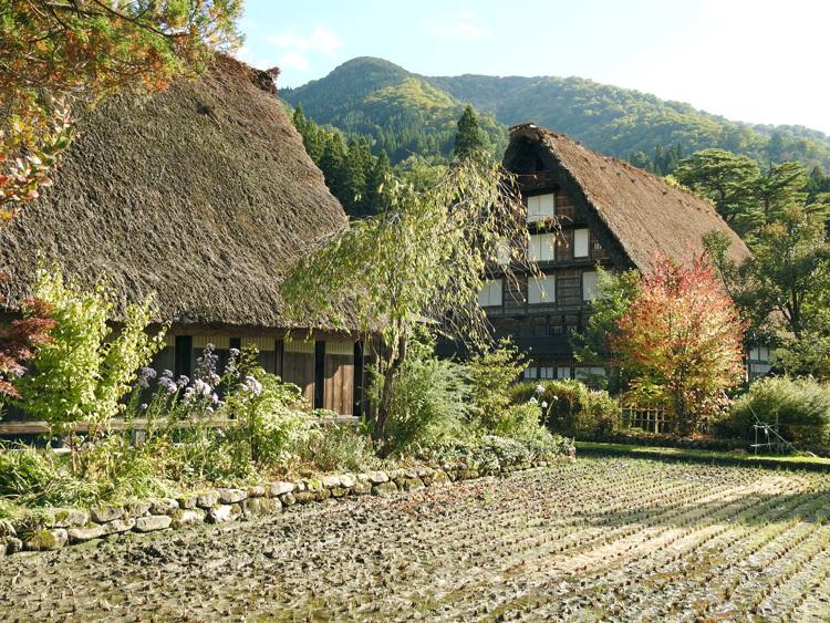 山に囲まれた飛騨 白川郷だけに、「紅葉」も見どころのひとつ9