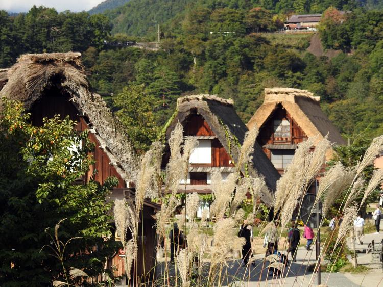 山に囲まれた飛騨 白川郷だけに、「紅葉」も見どころのひとつ10