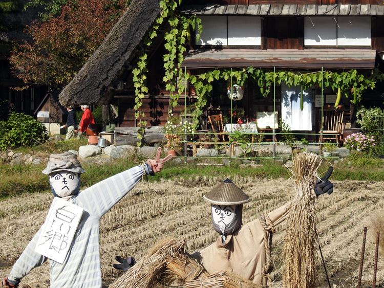 山に囲まれた飛騨 白川郷だけに、「紅葉」も見どころのひとつ12